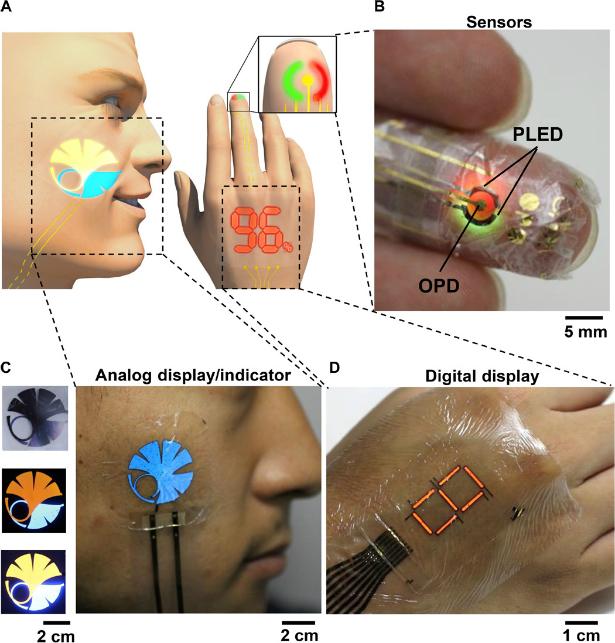 tatuagem-virtual-interna
