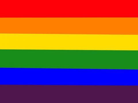 LGBTQ +